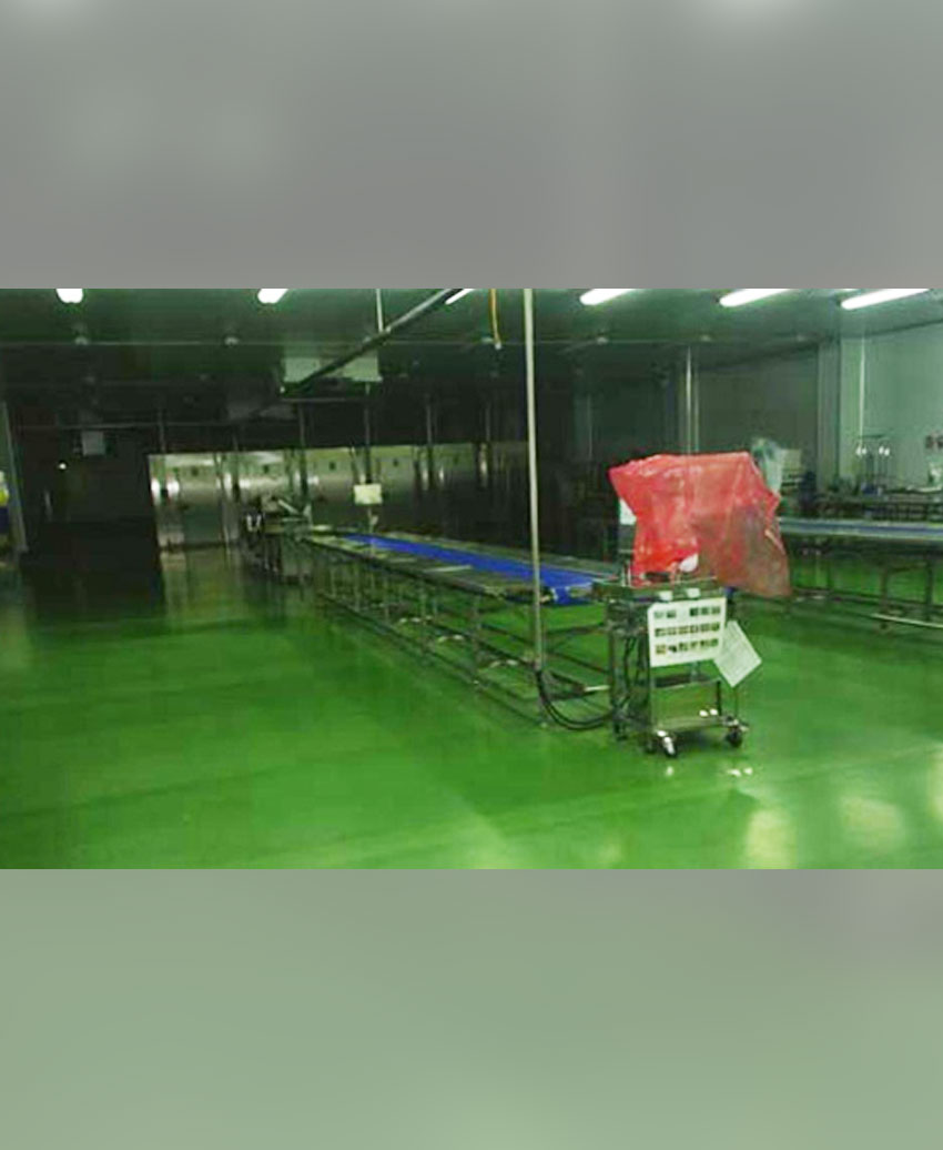 Pvc. Belt Conveyor